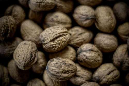 seeds walnut food nut