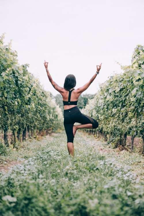 woman yoga tree pose vineyard outdoors