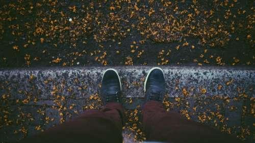 walk road autumn fall season
