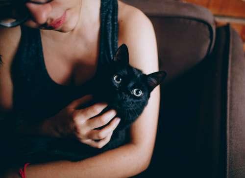 woman black cat pet kitten