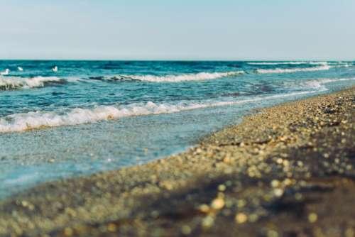 beach sand shore water waves