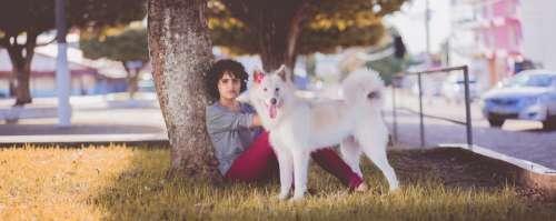 woman white dog pet animal