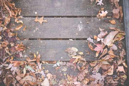 wood deck leaves autumn fall