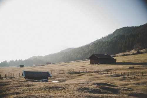 wood cabin summer barn field