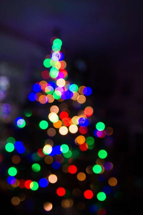 dark night christmas colorful lights