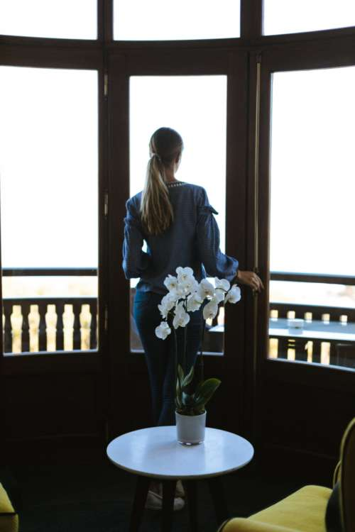 orchid woman window ponytail female
