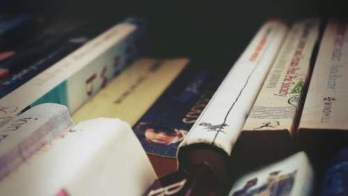 books reading literature novels bookstore