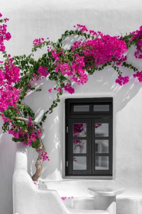 vacation resort window travel simple