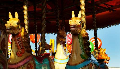 carousel horses horse fairground ride fairground