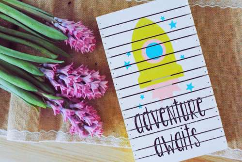 flower plant pink card text