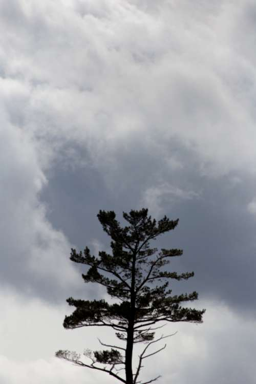 clouds sky monochromatic dramatic landscape