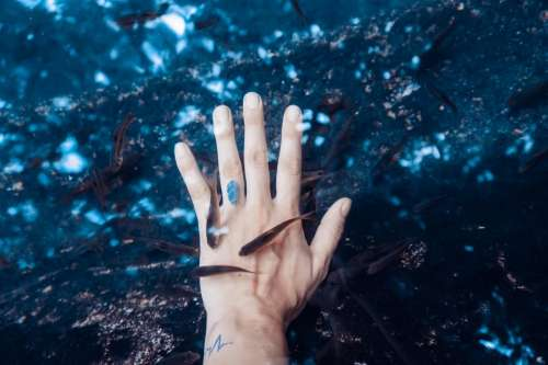 hand palm sea water aquatic