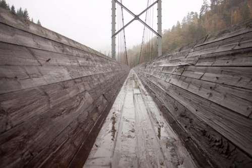 bridge trees wood outdoors
