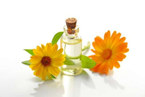 essential oil cosmetic oil spa calendula orange