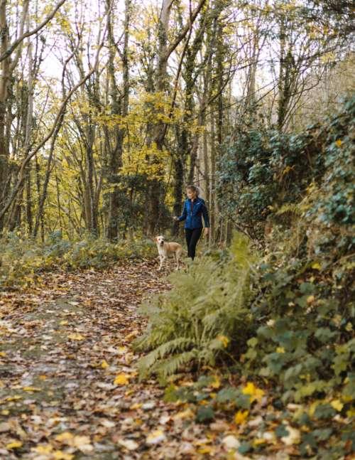 dog walking hiking woman trek