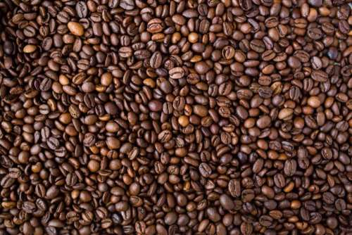 coffee beans food texture pattern