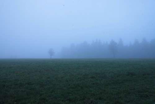 fog green blue field grass
