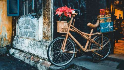 transportation bicycle wood bamboo flowers