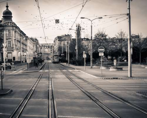 bratislava lines city black & white trams