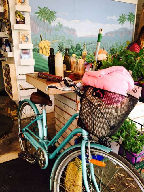 A Bicycle In A Flower Shack Photo