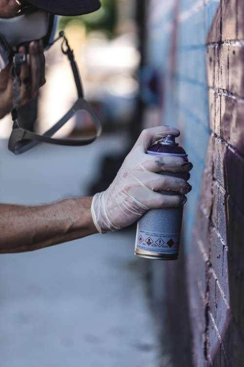 A Purple Spray Photo