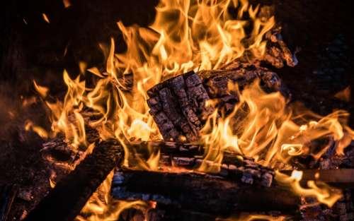 Campfire Closeup Photo