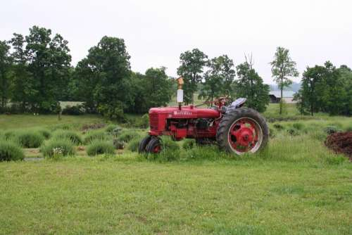 #tractor Farmall tractor Farmall farm farming equipment