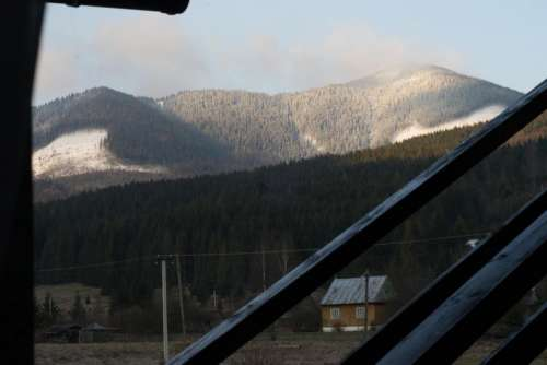 alpine background blue cold forest