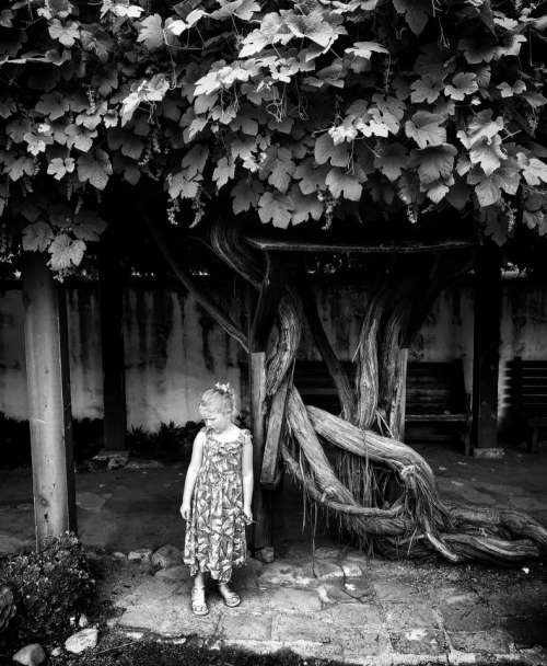 B/w girl tree child