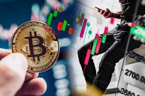 Bitcoin Charts Free Photo