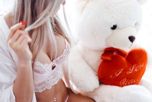 Woman in Pink Lace Lingerie with Big White Teddy Bear Free Photo
