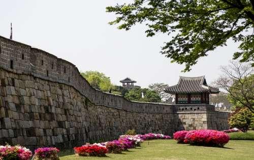 A Heart-Madonna Korea Republic Of Korea Suwon