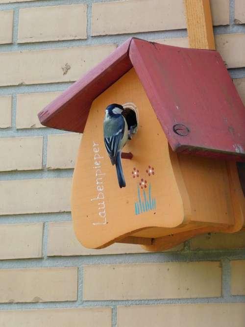 Aviary Bird Feeder Tit Nesting Box Nature Wood