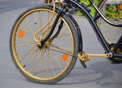 Bike Bicycle Tires Mature Wheel Close Up Rim