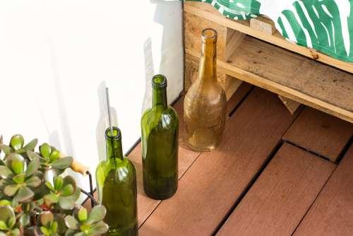 Bottle Bottles Plant Plants Wood Floor House