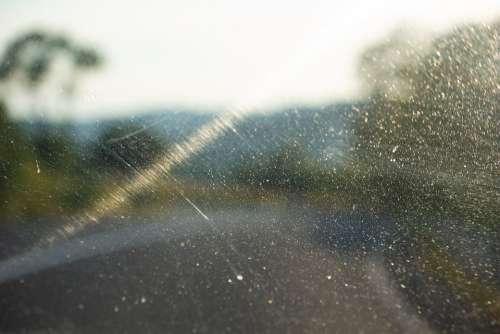 Car Window Window Sunshine Summer Windshield Glass