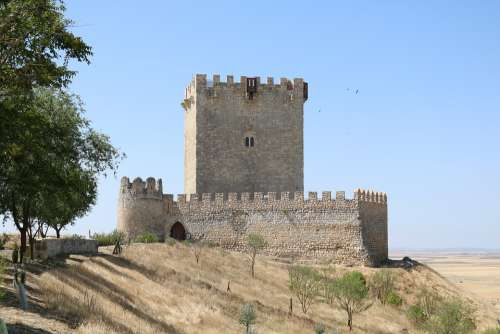Castle Valladolid Tiedra Spain Stone Magpie Tower