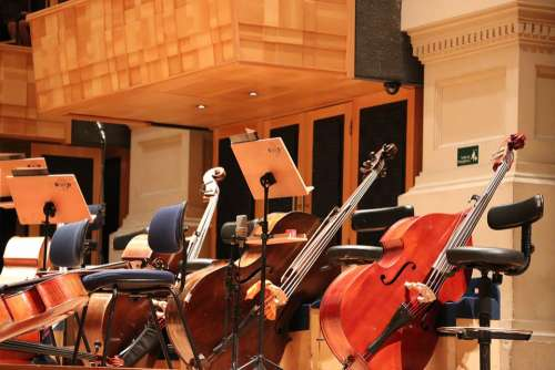 Cello Orchestra Jazz Luggage Are Paul Concert