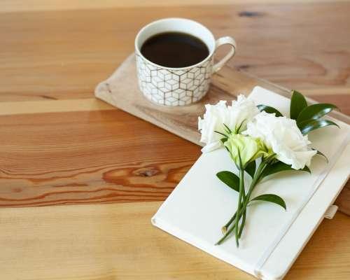 Coffee Clean Sketch Sketchbook Flowers Floral