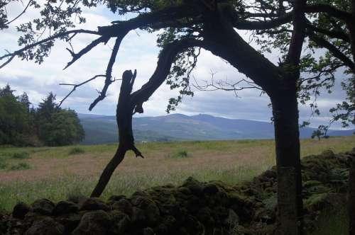 Countryside Scotland Hill Landscape Nature