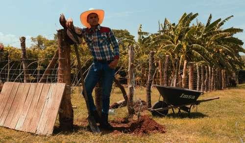 Cowboy Vaquero West Will Hat Nature Man Yellow