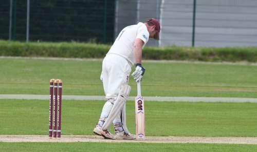 Cricket Sport Batsman Cricketer Player Ball Bat