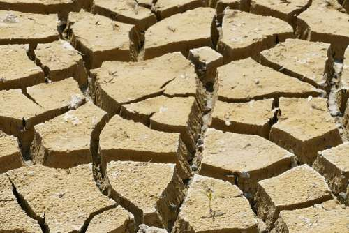 Dry Dehydration Drought Rip Crack Earth Ground