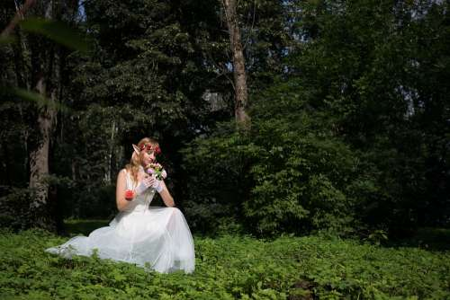 Elf Cosplay Fantasy Forest Nature Story Magic