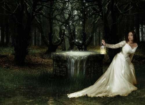 Fantasy Magic Forest Woman Fear Lights Fairytale