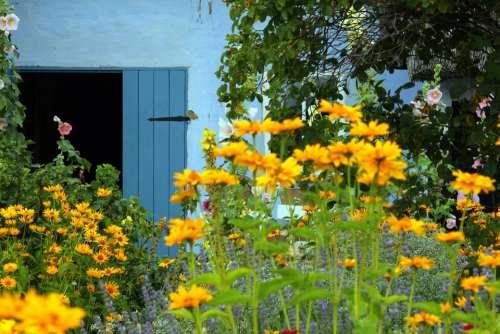 Farm Thatched Roofs Cottage Garden Garden