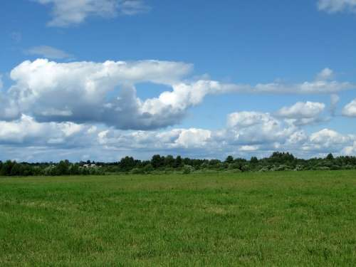 Field Meadow Sky Landscape Green In The Summer Of