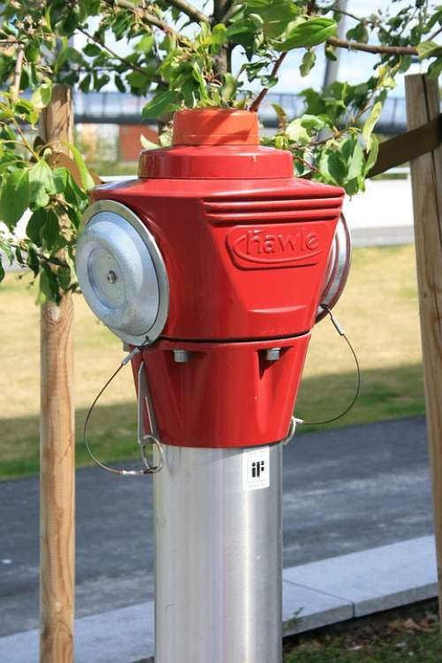 Fire Hydrant Three Grass Summer Red Alone