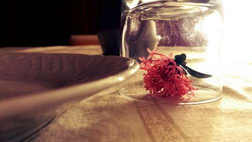Flower Glass Table Roses Decoration Romantic