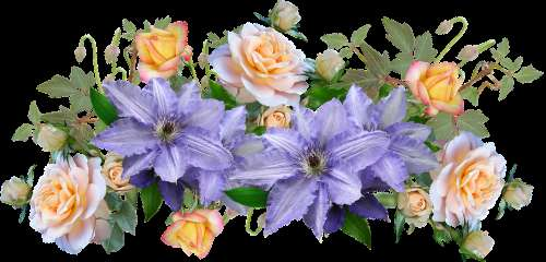 Flowers Clematis Roses Arrangement Decoration